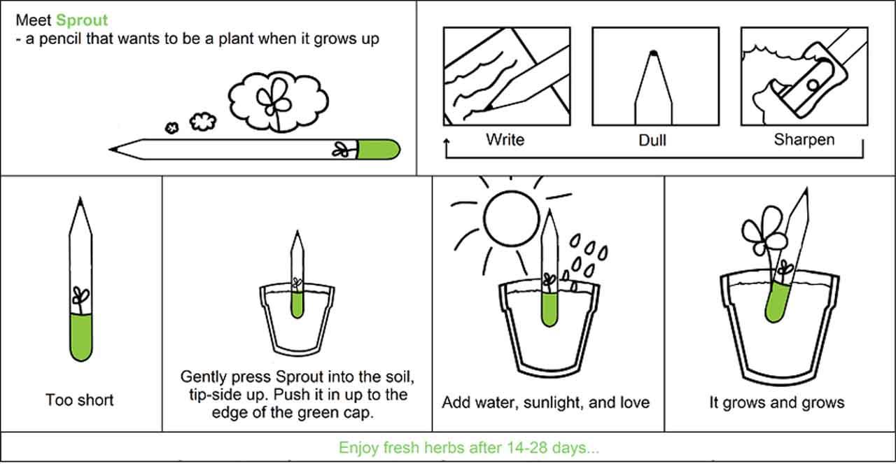 El sprout lapiz semilla es muy fácil de plantar, sólo hay que seguir las instrucciones del fabricante
