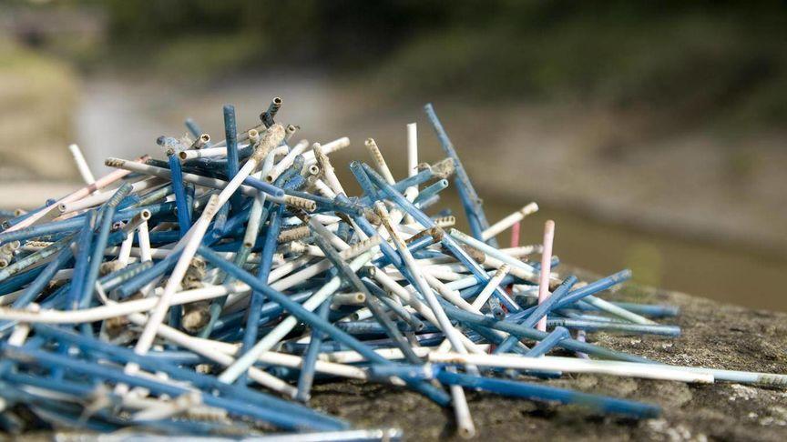 Los bastoncillos ecológicos de bambú son la mejor alternativa a los hisopos de plástico